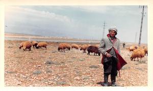 Baydar, Lebanon Postcard, Carte Postale non postcard backing, Dated 4-12-1966...
