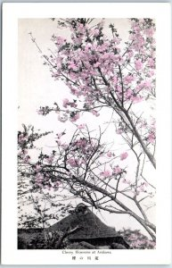 Vintage Tokyo, JAPAN Postcard Cherry Blossoms at ARAKAWA Tree View Unused