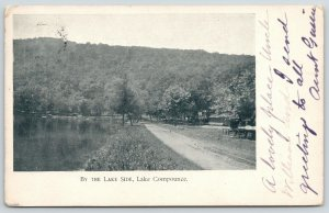 Bristol CT~Lake Compounce~Buggy & Trolley Only Signs of Life Lakeside Park*~1906