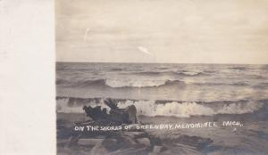 RP: MENOMINEE , Michigan , 00-10s; Shores of Green Bay