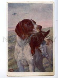 148233 HUNT Dog POINTER w/ Bird by BUNTOS Vintage PC