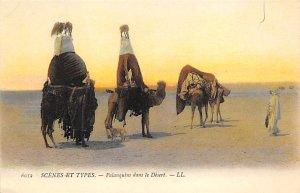 Camel Palanquins dans le Desert Unused