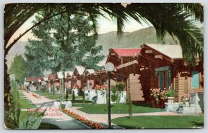 Los Angeles CA~Bungalow Court Homes~Palm & Evergreen Trees~Globe Lamp Post~1912