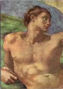 The Sistine Chapel Creation of Man Citta Del Vaticano Repro Unused Postcard D50