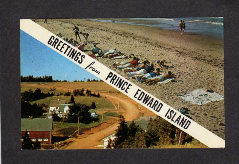 PEI Greetings From  PRINCE EDWARD ISLAND CANADA Carte Postale Postcard Beach
