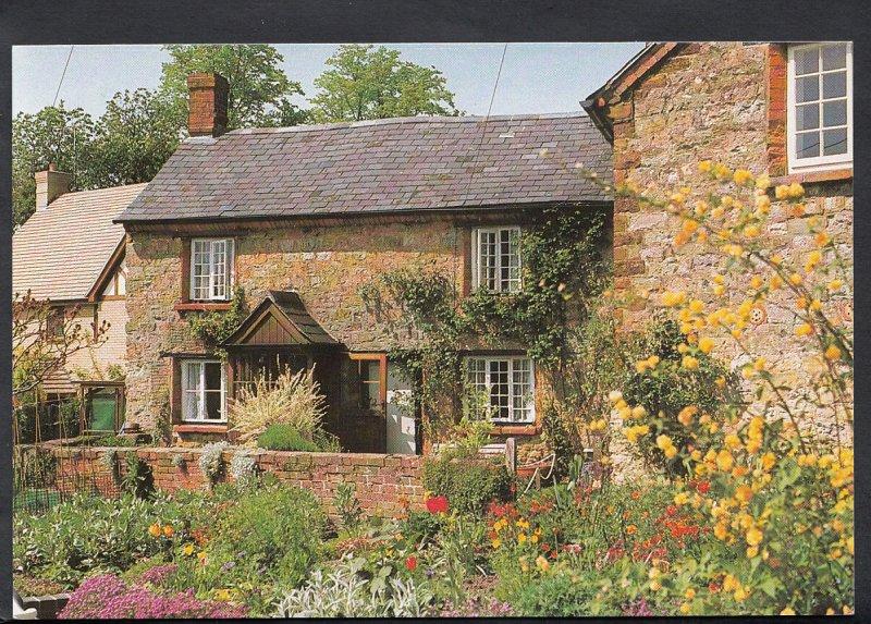 Northamptonshire Postcard - New Road, Greens Norton  A7922