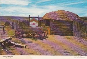 New Mexico Albuquerque The Original Dwelling Of The Navajo