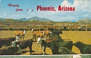 Arizona Phoenix Howdy From Phoenix