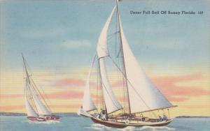 Florida Sailboats Under Full Sail Off The Sunny Florida Coast