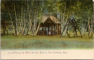 Fitchburg Massachusetts~Whalom Park~Shelter Among White Birches~Swing~c1905