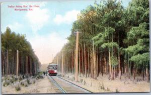 postcard Trolley Riding through the Pines, Montgomery, Alabama