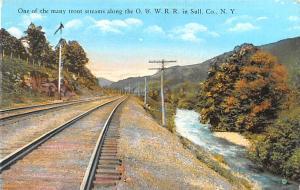 O & W R. R. Sullivan County NY USA Unused