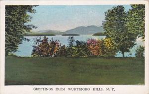 New York Greetings From Wurtsboro Hills 1933