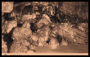 La Salle des Sacrabees,Grottes de Han,Belgium BIN