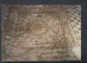 Sussex Postcard- Fishbourne Roman Palace - Cupid Holding a Trident Mosaic RR7057