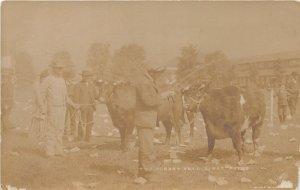 F82/ Occupational RPPC Postcard c1910 Farmer Bull Durham First Prize 18