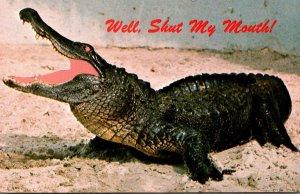 Florida Alligator Well Shut My Mouth