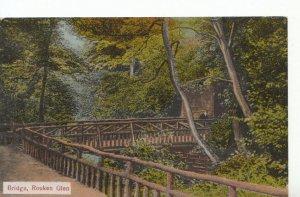 Scotland Postcard - Bridge - Rouken Glen - Renfrewshire -  Ref  ZZ5883