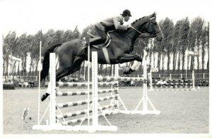 Horse Sports 1970 Jumping REAL PHOTO 03.02
