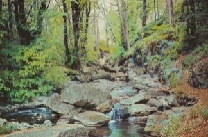 Ballaglass Glen Isle Of Man Postcard