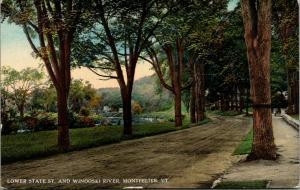Monpelier Vermont~Lower State Street Curves Around Winooski River~Dirt Road~1908