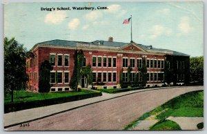 Waterbury Connecticut~Road by Driggs School~Ivy & Hedges~Flagpole~c1910 Postcard