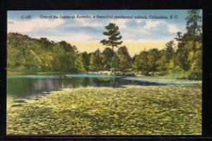 South Carolina colour Lake in Arcadia suburb Columbia, unused