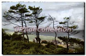 Modern Postcard Blonville sur mer Calvados dimension through the pines