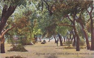 Avenue Of Live Oaks, Fortress Monroe, Virginia, PU-1911