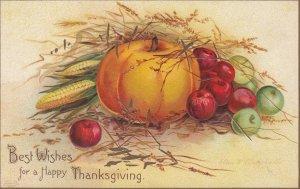 CLAPSADDLE , Thanksgiving pumpkin  , 00-10s