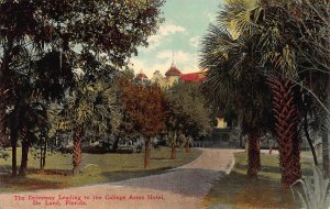 Driveway to the College Arms Hotel, De Land, Florida, Early Postcard, Unused