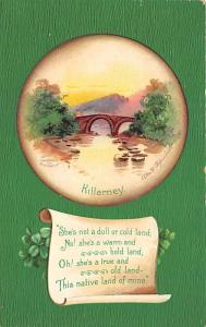 St Patrick's Day Post Card Old Vintage Antique Unused