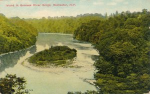 Island in Genesee River North of Lower Falls - Rochester New York - pm 1911 - DB