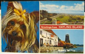 England Greetings from Hayling Island - unposted