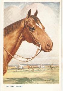 F.E.Valter. Horses. On the downs Lovely Valentine Postcard
