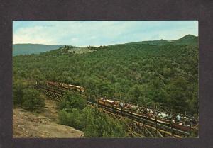 CO Royal Gorge Canyon Railroad Train Railway Canon City Colorado Postcard