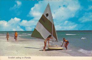 Sunfish Sailing In Florida
