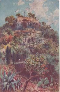 NICE , France , 00-10s : La Cascade Du Chateau, TUCK