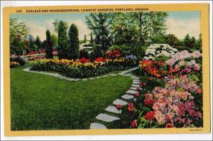 Azaleas & Rhododendrons, Lambert Garden, Portland OR