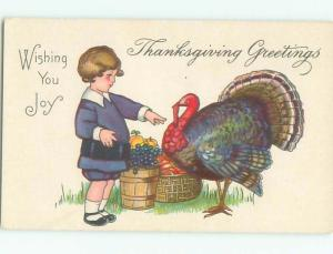 Pre-Linen Thanksgiving BOY REACHES OUT TO TOUCH TURKEY AB4396