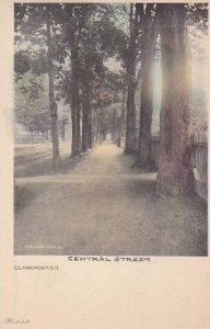 New Hampshire Claremont Central Street Albertype