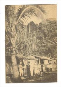 Les Nouvelles - HEBRIDES (now Vanuatu), Plantation de Teouma, ile Vate, 1910s