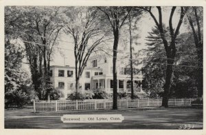 OLD LYME, Connecticut, 1930-50s; Boxwood