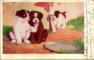 Vtg Carte Postale 1906 Udb Eavesdropping 3 Marron & Blanc Chiots S Porter Signé