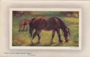 Harry PAYNE : Horsess in pasture , 1909 ; TUCK 9757
