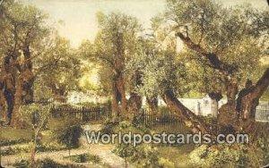 Jardin de Gethsemanie JerUSA lem, Israel 1927