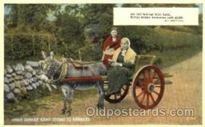 Irish donkey cart Animal Drawn Postcard Post Card  Irish donkey cart