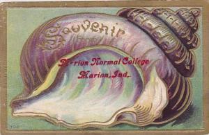 Souvenir Marion Normal Cottege Marion Indiana 1910