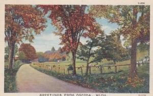 Michigan Greetings From Oscoda Curteich