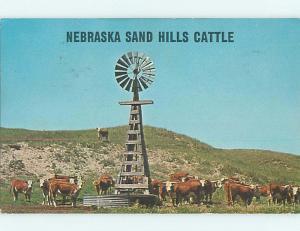 Pre-1980 CATTLE AT WINDMILL WEATHER VANE & SAND HILLS State of Nebraska NE t5277